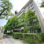 Renovated 2 Rooms Apt. Near Large Shopping Mall 23.8 M Yen